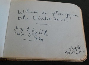 Where do flies go in Winter Time - Joy J Smith - Nov 6th 1934