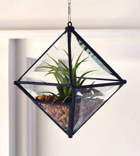 hangingbasket4