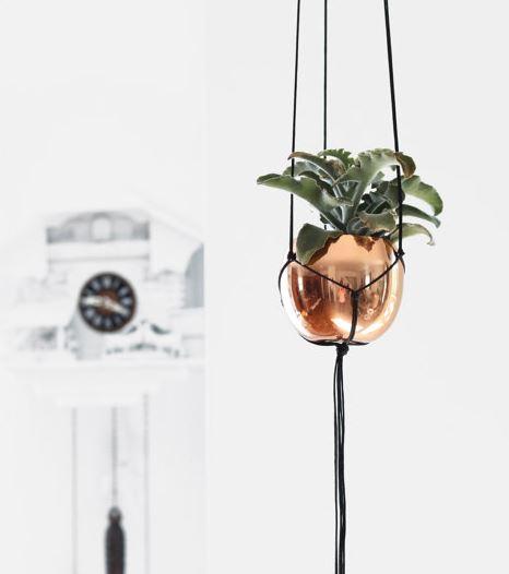 hangingbasket6